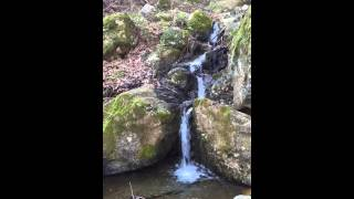 Mountain stream nature sounds, relax