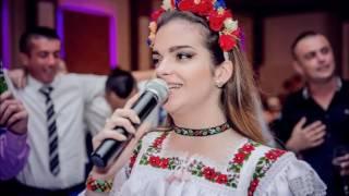 Daria Gâdea live nuntă