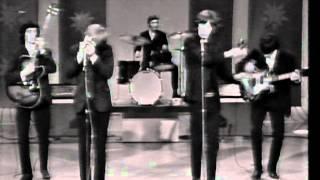 Not Fade Away-Rolling Stones with Brian Jones