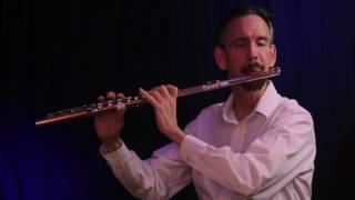 DR  DAVID KLEE PLAYS SCHERZINO BY ANDERSEN