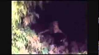 Menyeramkan! Tengkorak merangkak keluar dari gua