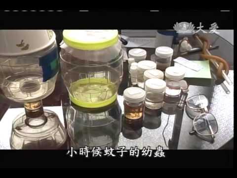 20101224《生命好精采》追蚊人~抗虐大師 連日清的故事 - YouTube