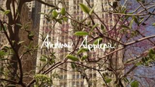 Andrew Applepie - Gitty Cat
