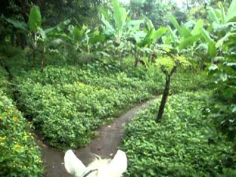 Horseback Ride Nicaragua