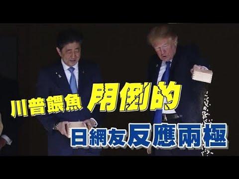 川普餵魚超不耐 日網友氣炸  | 台灣蘋果日報 - YouTube