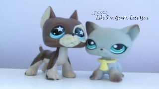 LPS: Like I'm Gonna Lose You (Contest Entry for Official CeleryLPS)