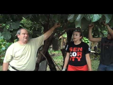 Nicaragua B-Roll