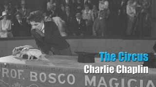 Charlie Chaplin - The Tramp Gets a Job - The Circus (1928)