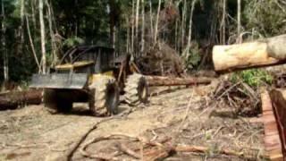 Arraste de Toras de Madeira em Área de Manejo Florestal - Curso Tecnico Florestal