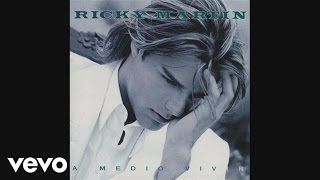 Ricky Martin - Somos La Semilla (audio)