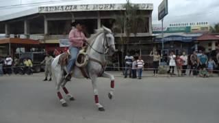 Juan Simón Espinal Monta su Caballo Español 2 / MOV07734