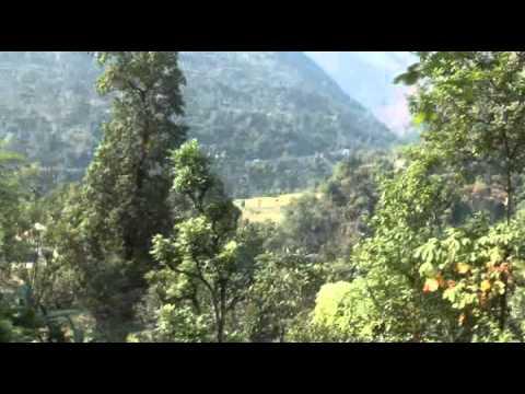Himalayas SIKKIM Buddhas&Flowers  4/5
