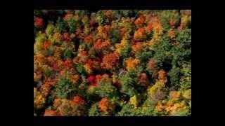 Pomyka jesień... śpiewa Małgorzata Ostrowska