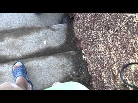 187 Steps