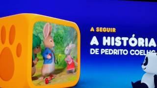 Parabéns Canal panda para Samuel Ferreira