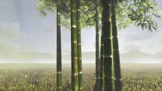Lumion 5.0 Bamboo Scene