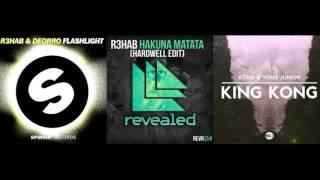 Hakuna Matata Hardwell Edit (Tomorrowland Mashup) - Paul Remake