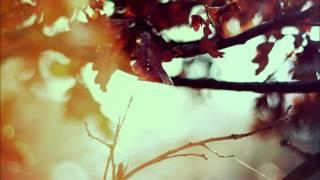 Bruno Mars - Nothing On You Acoustic Remix