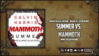 Summer vs. Mammoth (Ummet Ozcan Tomorrowland Mashup)