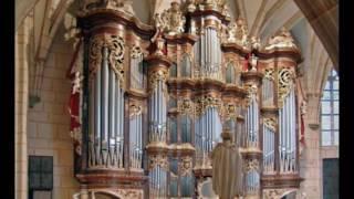 "Bach: Corale ""Jesus bleibet"" BWV 147 (organ arr. Belli)"