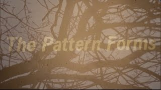 The Pattern Forms - The Sacrifice (official video)