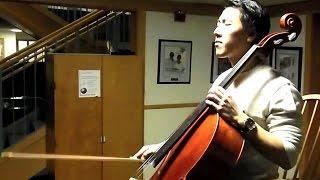 Coldplay - Viva La Vida Flute and Cello Cover