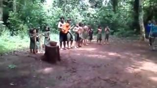 Guaraníes Su música