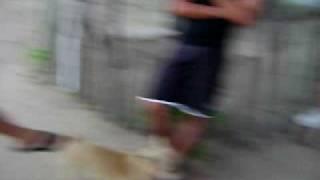 ESCORPIAO REI PARTE 01