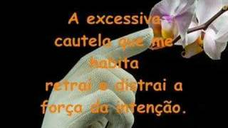 LIMITES -  Poesia de Maria da Graça Almeida