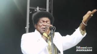 Charles Bradley LIVE @ Bonnaroo 2012