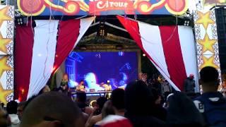 Ritmo live insonia circus