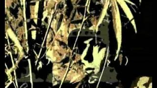 911 DUB MASSIVE  2006 Dani Xito & dj Fumo da Fumo Records/Rough Natture