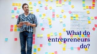 What Entrepreneurs Do?