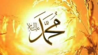 İki Cihan Güneşi Peygamberimiz - 15. Yıldızlar dökülürken