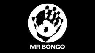 Welcome to the World of Mr Bongo
