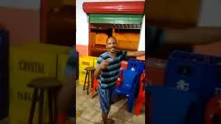 Uns bebado dançando ao som de Girls Just Want to Get Fun