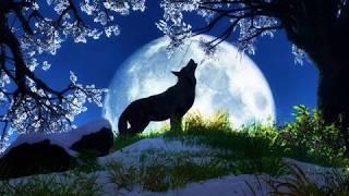 SPOOKY - DUSTY SPRINGFIELD / CLASSICS IV / ATLANTA RHYTHM SECTION instrumental cover