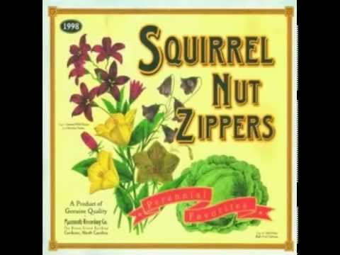 squirrel-nut-zippers-ghost-of-stephen-foster-domoarigatorobot