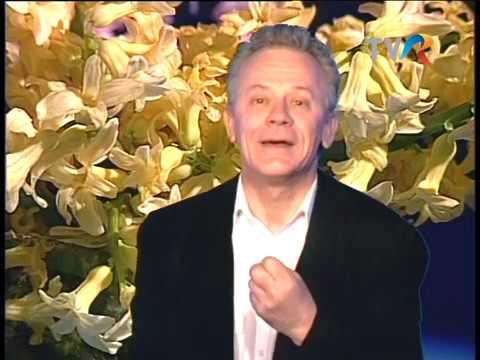 Valentin Uritescu - Primăvara