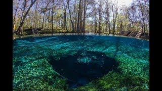 Nymano - I Wish I Could Sleep (Extended) With DALLMYD - Ginnie Springs, FL