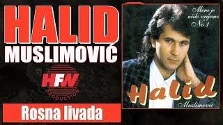Halid Muslimovic - Rosna livada - (Audio 1993) HD