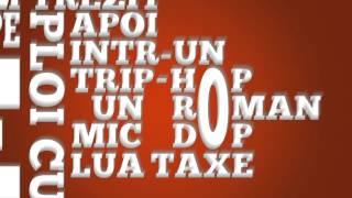 raku - interludiu pentru studiu (remix)