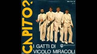 Capito?! - I gatti di Vicolo Miracoli - Sigla finale Domenica in...