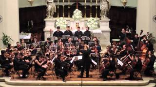 Gioie Musicali 2013 - Concerto Sinfonico - 3. Sinfonia n.6 (L.V. Beethoven) 3°mov