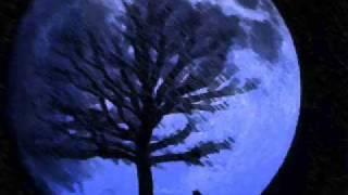 Crossfade - Cold (lyrics in description)