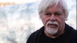 Sea Shepherd's Paul Watson: We have to stop exploiting the oceans