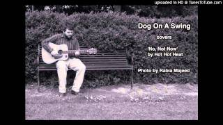 Dog On A Swing- No, Not Now (Hot Hot Heat cover)