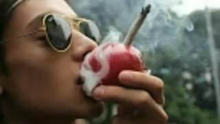 MINHA LOMBRA - Pacificadores -2017/(vídeo clipe)