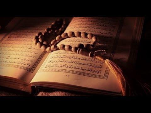 أنشودة نورٌ ملأ القلبَ ففاض بحب كتاب الله _ نشيد رائع عن القرآن