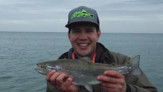 Lake Ontario+Sodus Bay Trolling Brown Trout and Pike!